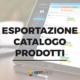 esportazione catalogo prodotti